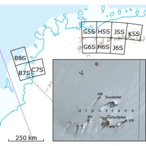 Kartserie:Antarktis satellitt (DML250S)