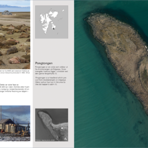 Svalbard fra lufta