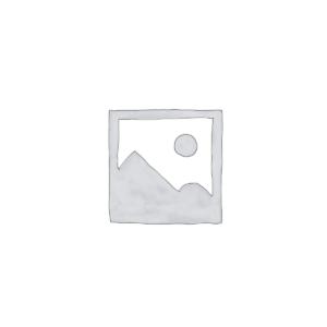 Kartserie: Svalbard (G100)